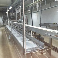 Poultry Slaughter and Processing Plant 6000 Chicken/Hour.